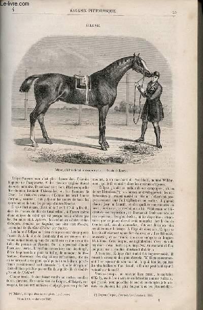 LE MAGASIN PITTORESQUE - Livraison n°004 - Eclipse, cheval de courses.
