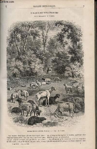 LE MAGASIN PITTORESQUE - Livraison n°002 - Quelques moutons étrangers de la ménagerie du muséum.