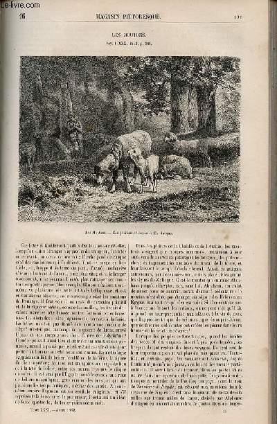 LE MAGASIN PITTORESQUE - Livraison n°016 - Les moutons.