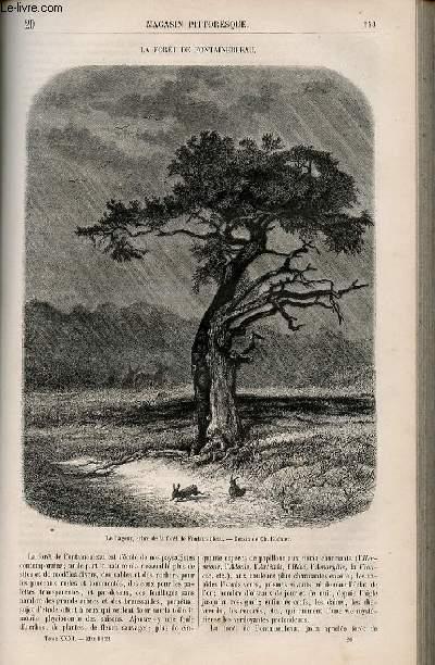 LE MAGASIN PITTORESQUE - Livraison n°020 - La forêt de Fontainebleau.