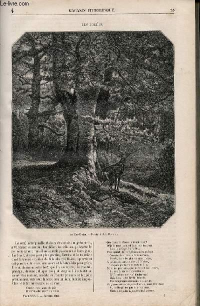 LE MAGASIN PITTORESQUE - Livraison n°004 - Les forêts.
