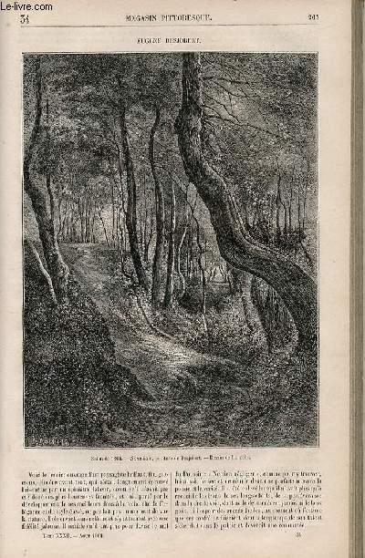LE MAGASIN PITTORESQUE - Livraison n°034 - Eugène Desjobert.