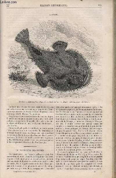LE MAGASIN PITTORESQUE - Livraison n°037 - L'ankoo.