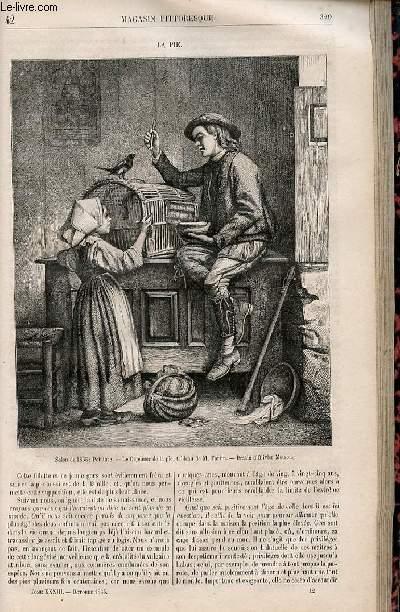 LE MAGASIN PITTORESQUE - Livraison n°042 - La pie.