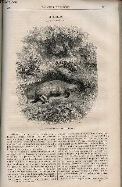 LE MAGASIN PITTORESQUE - Livraison n°026 - Le blaireau.