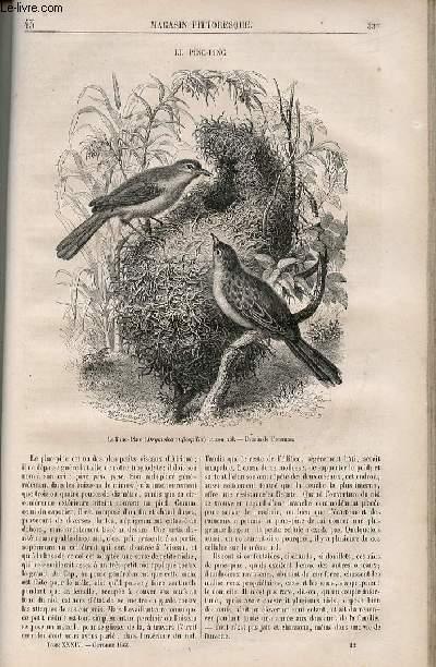 LE MAGASIN PITTORESQUE - Livraison n°043 - Le pinc-pinc.