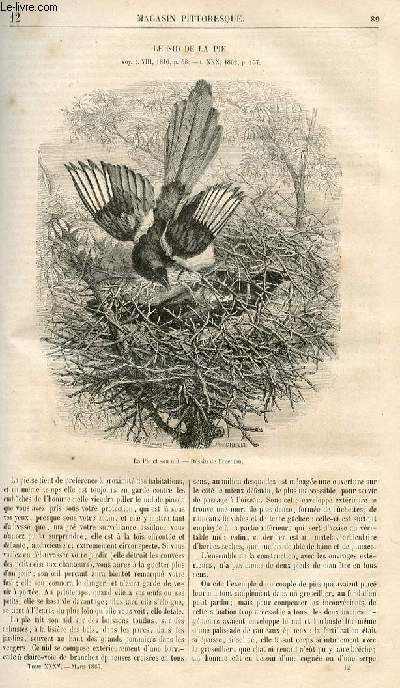 LE MAGASIN PITTORESQUE - Livraison n°012 - Le nid de la pie.