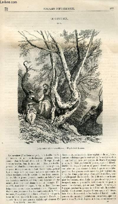 LE MAGASIN PITTORESQUE - Livraison n°032 - Le caroubier (Nice).