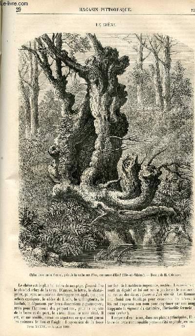 LE MAGASIN PITTORESQUE - Livraison n°029 - Le chêne.