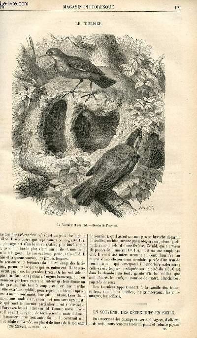 LE MAGASIN PITTORESQUE - Livraison n°016 - el fournier (oiseau).