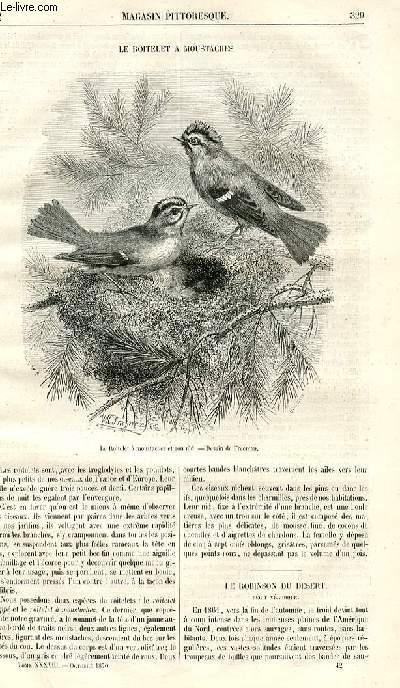 LE MAGASIN PITTORESQUE - Livraison n°042 - Le roitelet à moustaches.