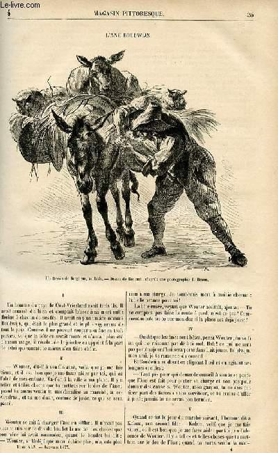 LE MAGASIN PITTORESQUE - Livraison n°04 - L'âne boudwijn.