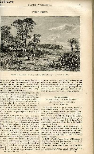 LE MAGASIN PITTORESQUE - Livraison n°21 - L'ajonc épineux.