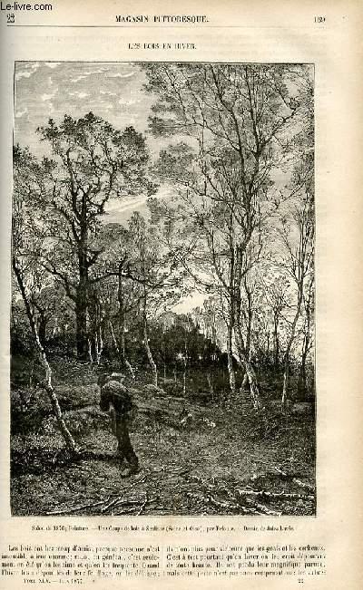 LE MAGASIN PITTORESQUE - Livraison n°22 - Les bois en hiver.