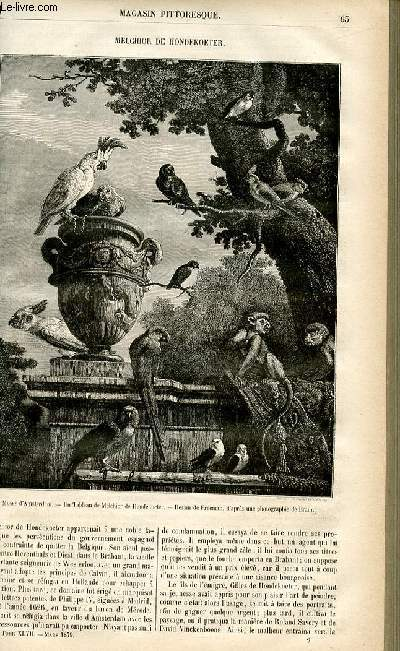 LE MAGASIN PITTORESQUE - Livraison n°09 - Melchior de Hondekoeter.