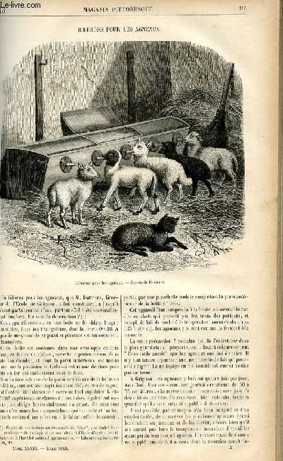 LE MAGASIN PITTORESQUE - Livraison n°13 - Biberons pour les agneaux.