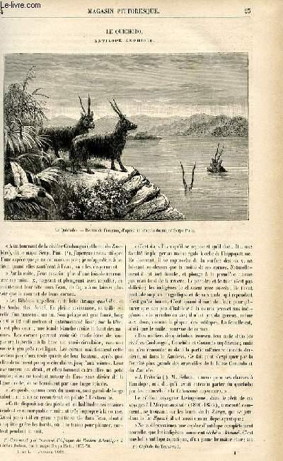 LE MAGASIN PITTORESQUE - Livraison n°04 - Le quichobo, antilope amphibie.