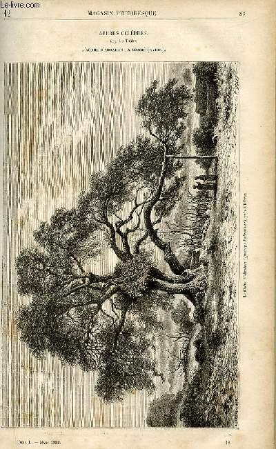 LE MAGASIN PITTORESQUE - Livraison n°12 - Arbres célèbres - l'arbre d'Abraham à Mamré.