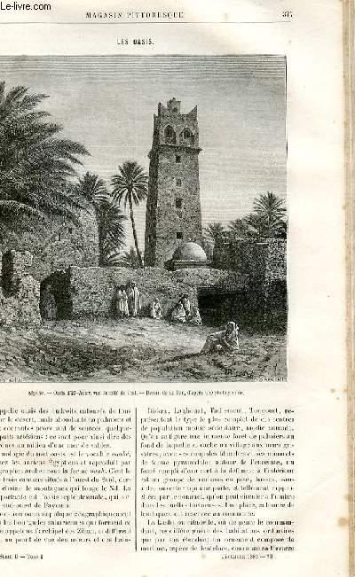 LE MAGASIN PITTORESQUE - Livraison n°23 - Les oasis.