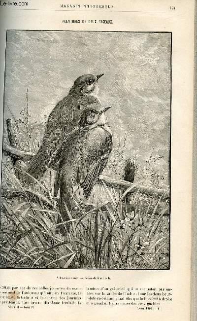 LE MAGASIN PITTORESQUE - Livraison n°08 - Aventures des deux oiseaux par Girardin.