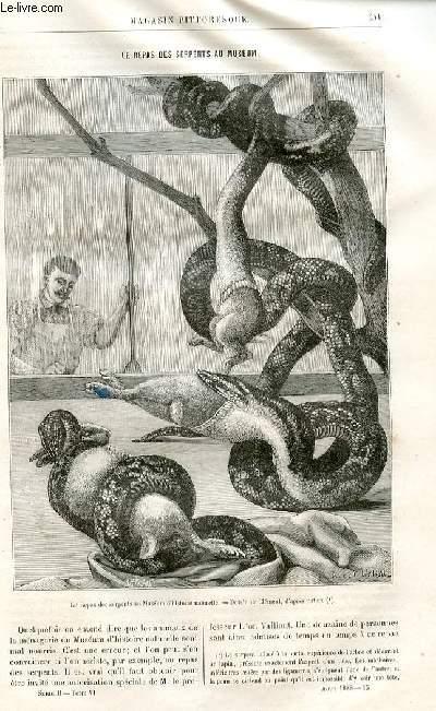 LE MAGASIN PITTORESQUE - Livraison n°15 - Le repas des serpents au muséum par Charles Brongniart.