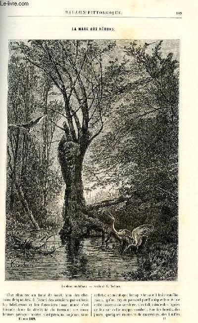 LE MAGASIN PITTORESQUE - Livraison n°11 - La mare aux hérons par G. de Cherville.