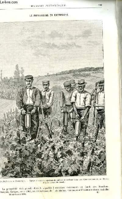 LE MAGASIN PITTORESQUE - Livraison n°18 - Le phylloxera en Champagne par  par Georges Couanon.