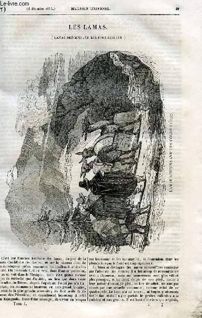 Le magasin universel - tome premier - Livraison n°07 - Lamas descendant les cordillères.