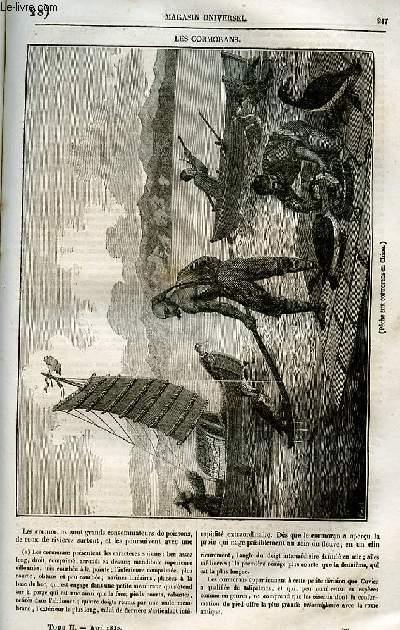 Le magasin universel - tome second - Livraison n°28 - Les cormorans.