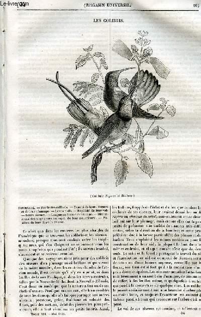 Le magasin universel - tome troisième - Livraison n°34 - Les colibris.