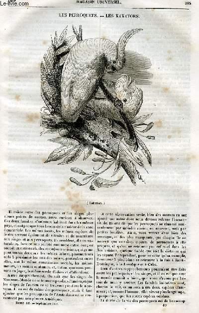Le magasin universel - tome troisième - Livraison n°49 - Les perroquets -les kakatoes.