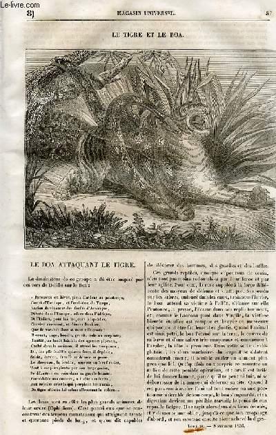 Le magasin universel - tome quatrième- Livraison n°08 - le tigre et le boa.