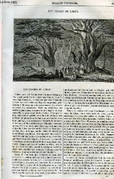 Le magasin universel - tome cinquième - Livraison n°11 - Les cèdres du Liban.