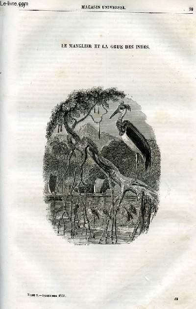 Le magasin universel - tome cinquième - Livraison n°12 - Le mangler et la grue des Indes.
