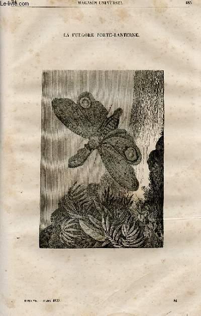 Le magasin universel - tome sixième - Livraison n°24 - La fulgore porte-lanterne.