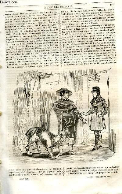 Le musée des familles - lecture du soir - 1ère série - livraison n°23 - Voyages - des histoires de chasse par un gant jaune,suite et fin.