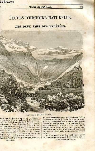 Le musée des familles - lecture du soir - 1ère série - livraison n°25 et 26 - Etudes d'histoire naturelle - Les deux amis des Pyrénées par Bethoud.