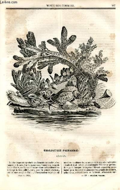 Le musée des familles - lecture du soir - deuxième série - livraison n°18 et 19 - Sous la mer par Auguste Bertsch.