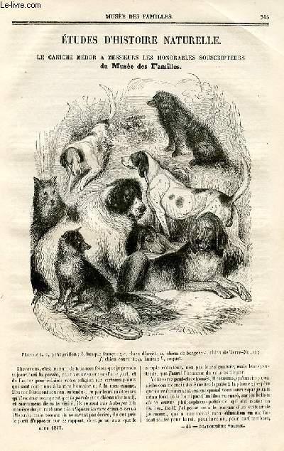 Le musée des familles - lecture du soir - deuxième série - livraison n°44 - Etudes d'histoire naturelle - le caniche Médor à ses messieurs les honorables souscripteurs du musée des familles  par Boitard.