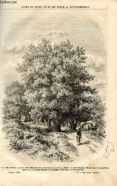 Le musée des familles - lecture du soir - deuxième série - livraison n°03 - Chêne de Hneri IV et de Sully , à Fontainebleau.
