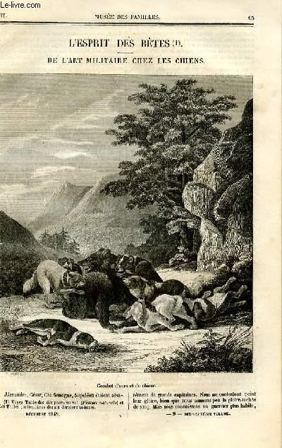 Le musée des familles - lecture du soir - deuxième série - livraison n°09 - L'esprit des bêtes,suite - De l'art militaire chez les chiens par De Chatouville.