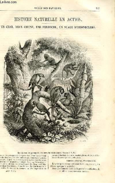 Le musée des familles - lecture du soir - deuxième série - livraisons n°43 et 44 - Histoire naturelle en action - Un chat, deux chiens, une perruche, un nuage d