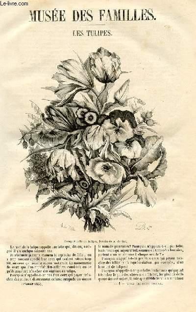 Le musée des familles - lecture du soir - livraison n°01 - Les tulipes par Alph. Karr.