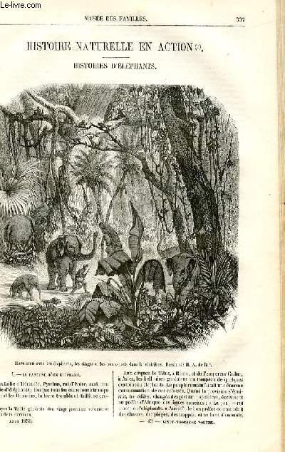 Le musée des familles - lecture du soir -  livraisons n°43 et 44 - Histoire naturelle en action - Histoires d'éléphants par Méry,à suivre .