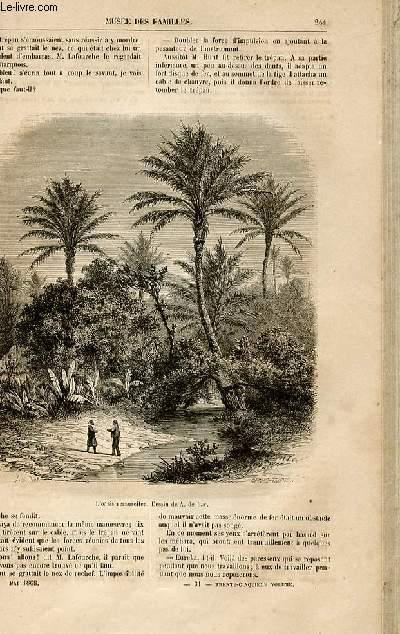 Le musée des familles - lecture du soir -  livraisons n°31 et 32 - Nouvelles et voyages - grandeur et décadence d'un oasis, suite par Wallut.