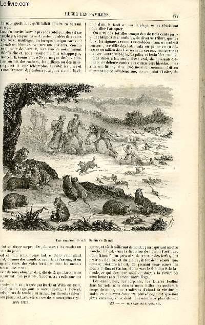Le musée des familles - lecture du soir -  livraisons n°23 et 24 - Voyages - L'Alsace Lorraine en Australie,suite par Dubarry.