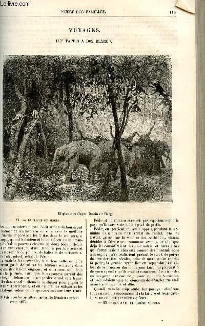 Le musée des familles - lecture du soir -  livraisons n°15 et 16- Voyages - les tapirs à dos blanc par Dubarry,suite.