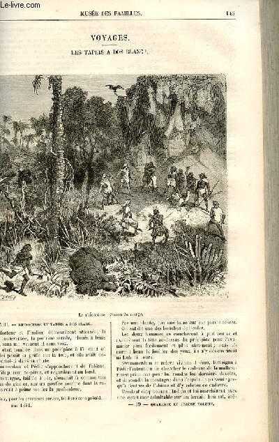 Le musée des familles - lecture du soir -  livraisons n°19 et 20 - Voyages - Les tapirs à dos blanc par Dubarry,suite et fin.