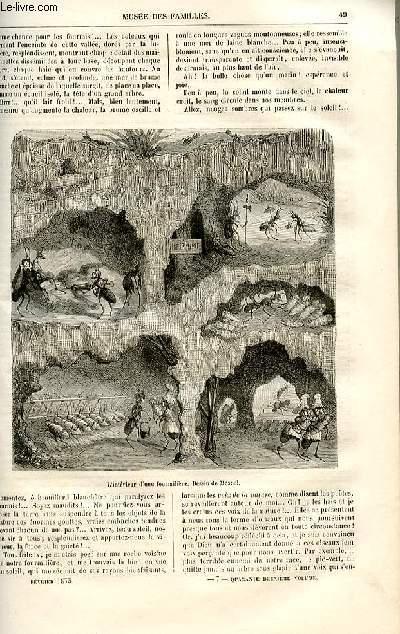 Le musée des familles - lecture du soir -  livraisons n°07 et 08 - Histoire naturelle en action - voyages et aventures d'une fourmi rouge par De La Blanchère, suite.