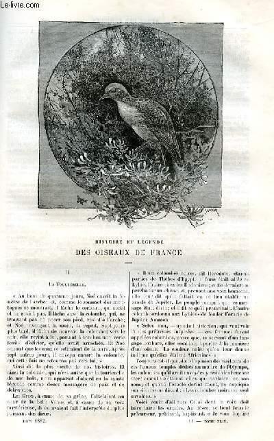 Le musée des familles - lecture du soir -  livraison n°11, 12 HISTOIRE ET LEGENDE DES OISEAUX DE FRANCE